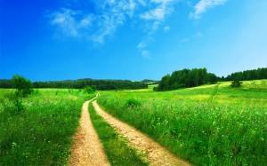 beautiful_scenery-wide